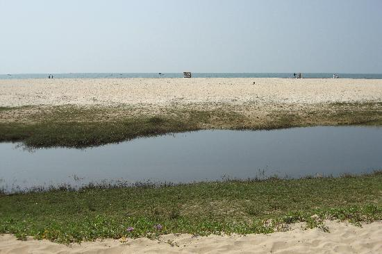 The Zuri White Sands Goa Resort & Casino: Пляж отделен от отеля речкой, от которой иногда попахивает...