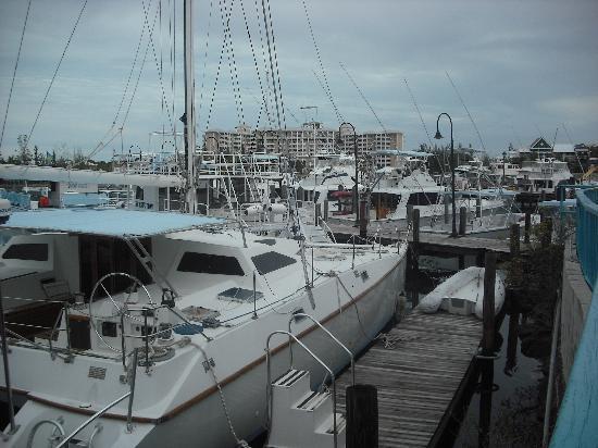 Le Med Mediterranean Restaurant: View of dock in front of Restaurant