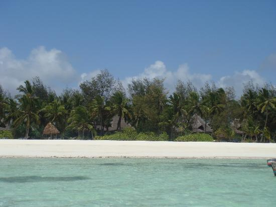 Pongwe Beach Hotel: The hotel from the sea.