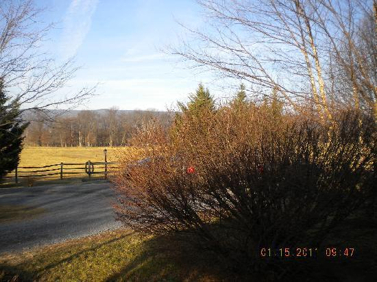 Piney Hill Bed & Breakfast: view