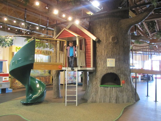 Monterey County Youth Museum: TreeHouse