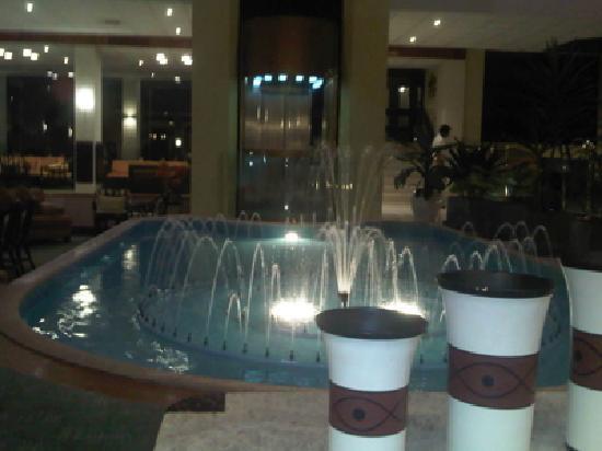 Dorado Plaza Hotel & Business: lobby2
