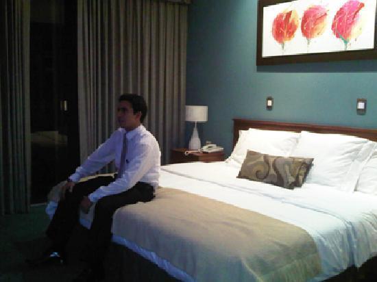Dorado Plaza Hotel & Business: habitaciones