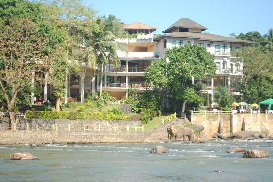 Hotel Elephant Bay: the view of the hotel from the riverbed