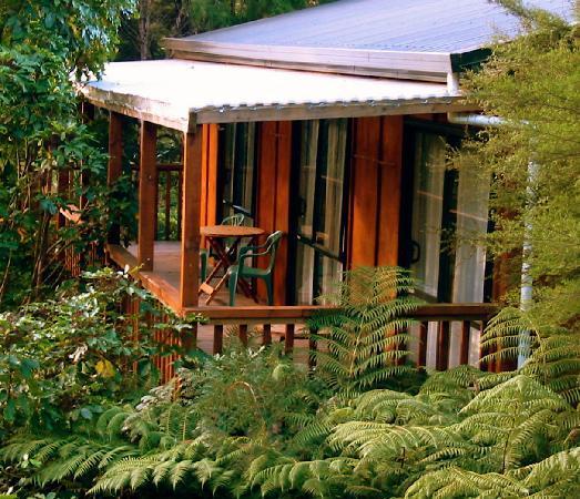 Kanuka Ridge Abel Tasman Backpackers: Kanuka Ridge tree top verandahs