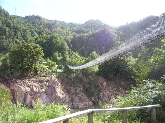 Buller Gorge Swingbridge Ltd