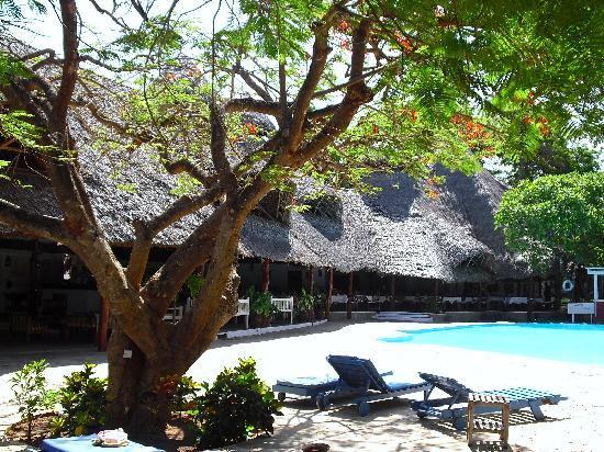 Sandies Coconut Village : piscina