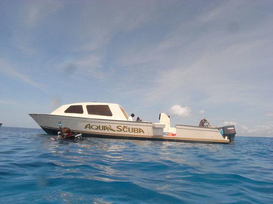 Aqua Scuba Center : 43 ft Dive Boat