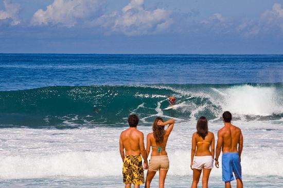 Oahu Hi North S Winter Waves