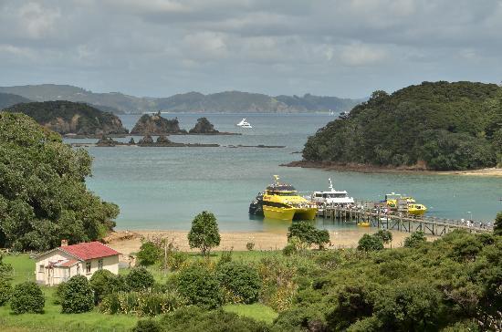 Explore- Sail Lion New Zealand: You do get to go ashore!