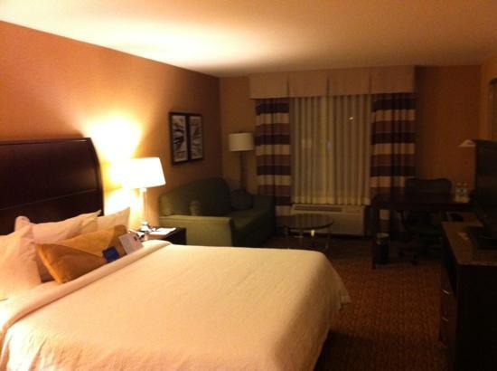 Hilton Garden Inn St Louis Airport: 354 business king