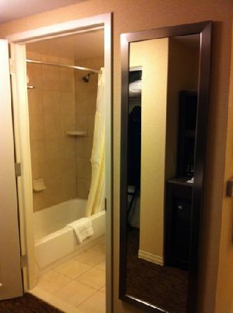 Hilton Garden Inn St Louis Airport: full length mirror, standard shower