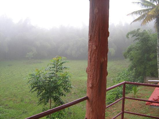 Feel the nature from Konark Homestay