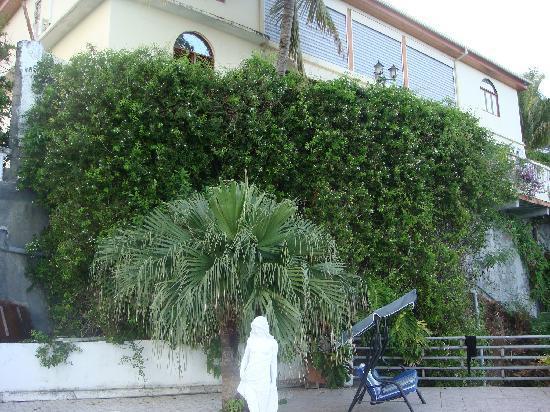 Hotel Le Rocher: le jardin