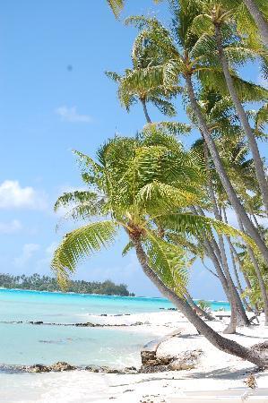 Bora Bora Pearl Beach Resort & Spa: Beach shot