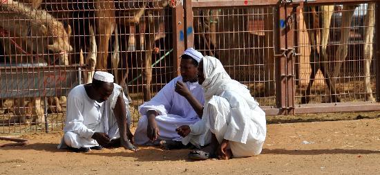 Al Ain, Emirados Árabes: personaggi al maercato dei cammelli