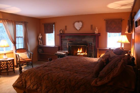 Colonel Williams Inn: Room 11 with fire