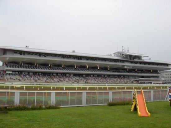 Hakodate Horse Racetrack : スタンド