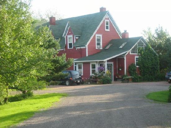 Little Shemogue Inn: Driveway to the Inn
