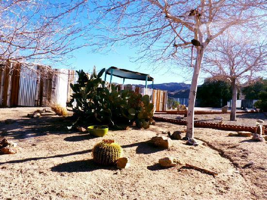 Harmony Motel: The courtyard