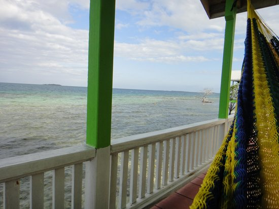 Tarpon Caye Belize: View from the hammock