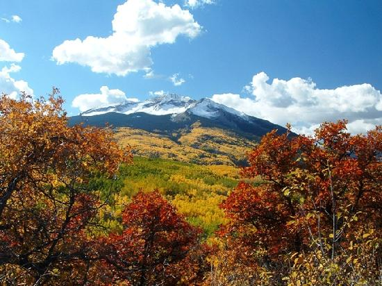 Crested Butte, Колорадо: Colorado's Largest Aspen Grove, GCBTA Photo