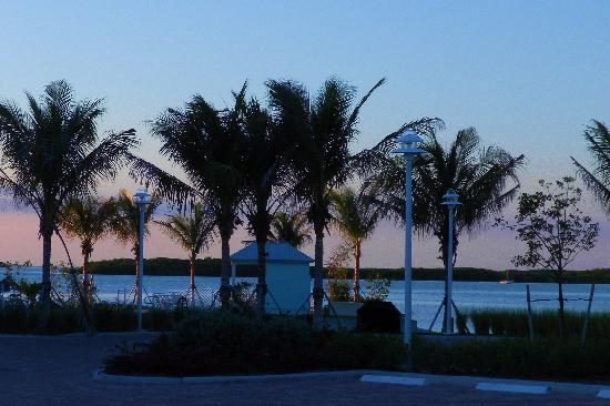 Islander Bayside Townhomes, a Guy Harvey Outpost: View from the entrance when we first arrived