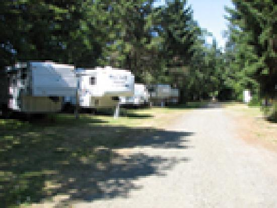 Ocean Park Resort: Annual Area Of RV Park