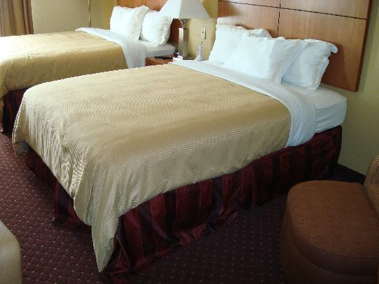 Wingate by Wyndham @ Universal Studios & Convention Center: the bedroom