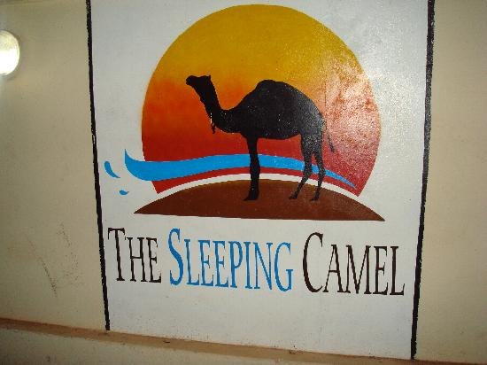 The Sleeping Camel: That's the place!