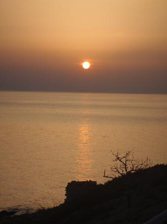 Ikaria, Greece: Subset-Toxotis