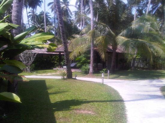 Nikki Beach Resort & Spa : Our bungalow