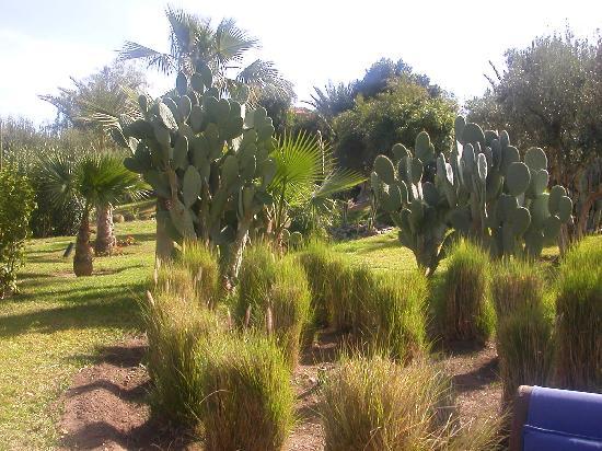 """Villa Vanille: un """"jardin"""" digne de ce nom"""