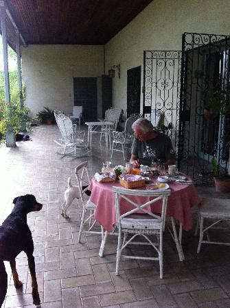 Bodega Cavagnaro: Breakfast on veranda of big house