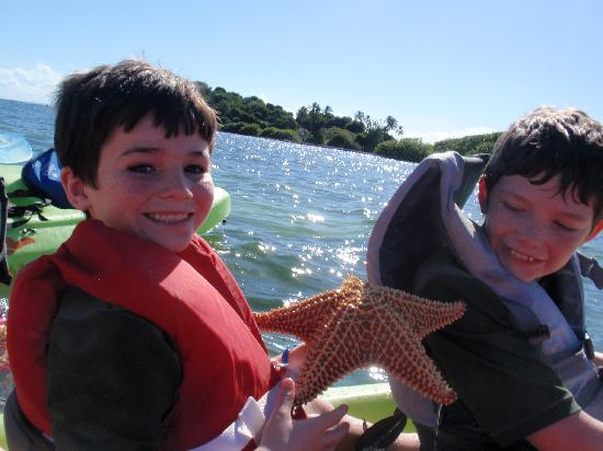 Barefoot Travelers Kayak Tour to Monkey Island: A starfish--don't see too many in Kansas!