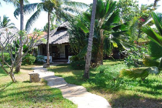 The Palms: Les extérieurs
