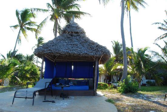 The Palms: La plage