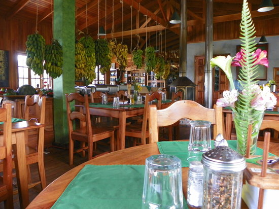Los Quetzales Lodge Restaurant: Dining Room