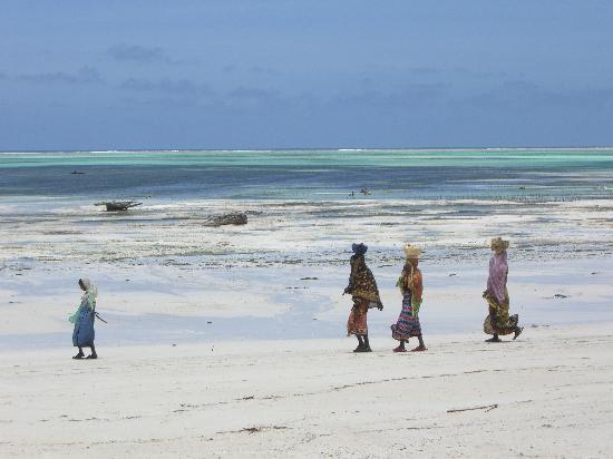 Blu Marlin Village: passeggiare in spiaggia 2