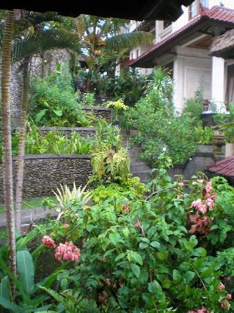 Sagitarius Inn: lower garden guesthouse area