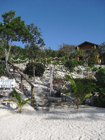 Shannas Cove Resort: We stayed in the Turtle Bungalow, which is literally steps from the beach.
