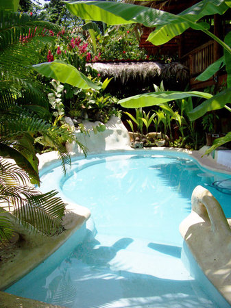 Caribe Town : Relaxing salt water pool and swim-up bar