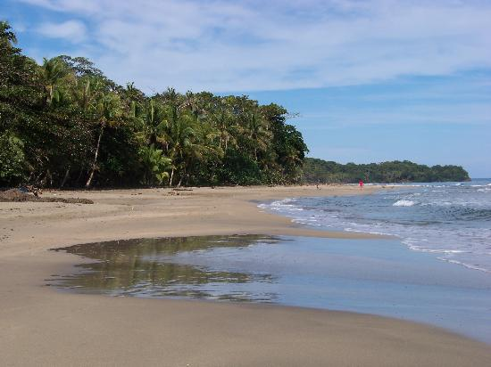 Caribe Town : Only 150 meters from this beach