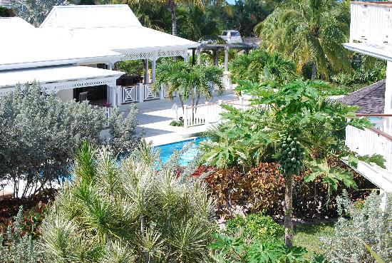 Royal West Indies Resort: Great views!