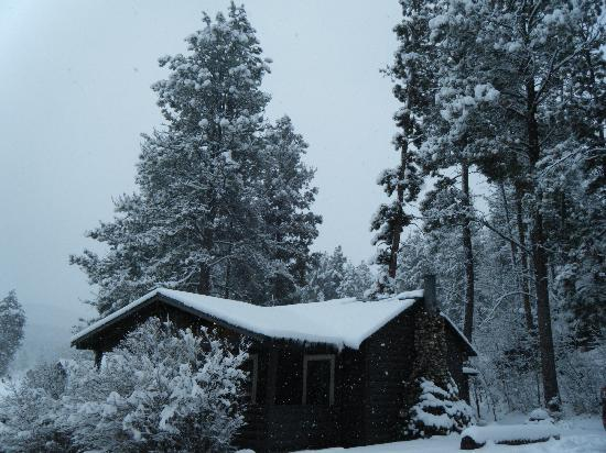 Hill City, SD: We love winter in the Black Hills at PIne Rest Cabins