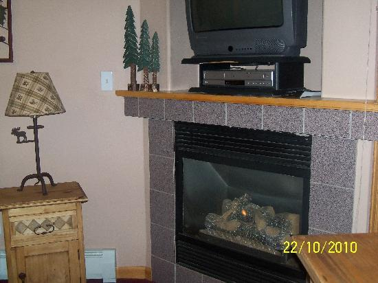Creekside Suites & Condos: Fireplace with DVD and TV
