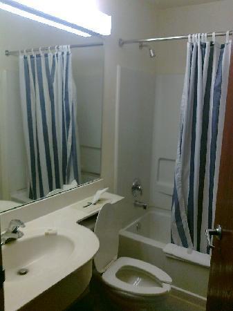 Microtel Inn & Suites by Wyndham Hillsborough: Bathroom