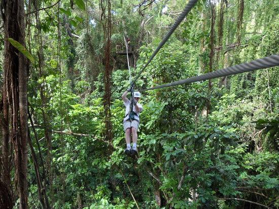 Aerial Trek Zipline Adventures: Zipping along!