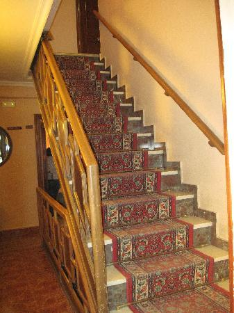 Hostal Avenida : Stairs - Escalera interior