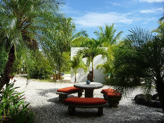 Hotel Horizontes de Montezuma: Auf dem Weg zumPool